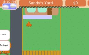 A Small Yard